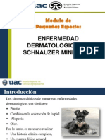 Caso Clinico11