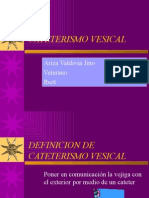 CATETERISMO_VESICAL