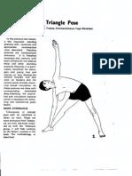 Ramaswami_07_The_Triangle_Pose.pdf