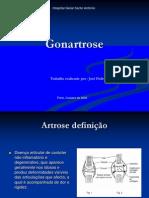 Gonartrose Def