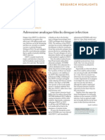 Adenosine Analogue Blocks Dengue Infection