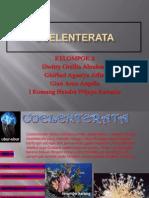 coelenterata123-130216065454-phpapp02