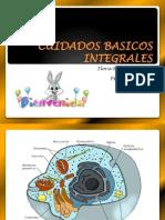CUIDADOS BASICOS INTEGRALES