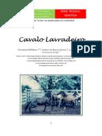 Serie Tecnica Cavalo Lavradeiro