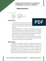 Memoria Descriptiva - Carretera El Hospital
