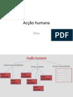 Acção humana