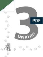 RA Unidad 3