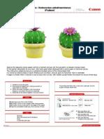 Notocactus papercraft