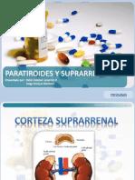 paratiroidesysuprarrenales-101110202246-phpapp01