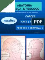 regioes da cabeça e do pescoço