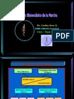 Análisis Biomecánico de la Marcha
