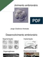 Desenvolvimento embrionário e placenta