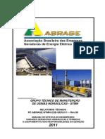 ABRAGE-Relatório_Desempenho-Anual-2011-CDE-GTMN-Rev01