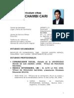 Curriculum Felix Chambi