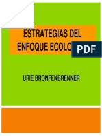 Estrategias Del Modelo Ecologico (1)