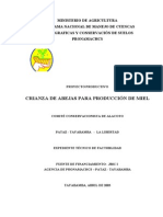 Apicultura - Pataz