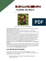 Las Flores de Bach