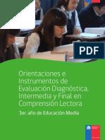 Eval_Diagnóstica_3ro_Medio