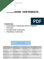 2-2-vertebrata