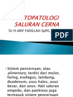Histopatologi Saluran Cerna Fk-Ay 2010