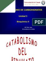 Metabolismo de Carbohidratos - Fermentacion