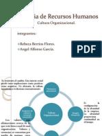Cultura Organizacional_ ANREB