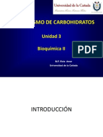 Metabolismo de Carbohidratos - Introduccion