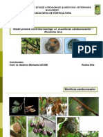 Control biologic Monilinia laxa