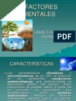 losfactoresambientales-120507113205-phpapp02.ppt