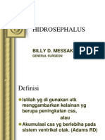 hidrosephalus
