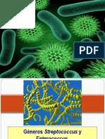 Bacterias Primeros 2 Grupos