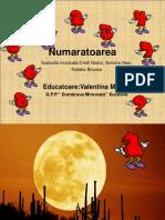 numaratoarea_valentinamusca