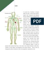 Anatomy Physiology Dengue