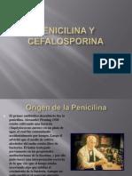Penicilina y Cefalosporina