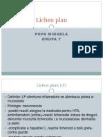 Lichen Plan