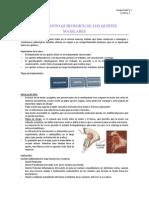 Tratamiento Quirurgico de Los Quistes Maxilares..