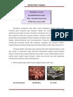 Norhafieza Awang- Biosfera Tanah