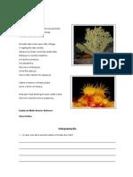 Fundo do mar - Isabel Pinheiro.pdf