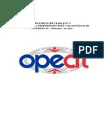 Tensiones en La Prof Docente OPECH BORRADOR