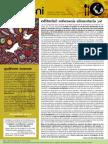 Nyeleni Newsletter Num 13 ES