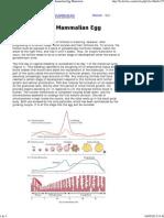 Hormones Mammalian Egg Maturation