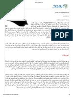 قراءة مكيافيلي في العراق