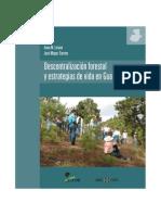Forestales Guatemala