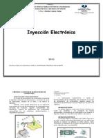 Apunte de Inyeccion PDF