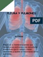 Expo Pulmon y Pleura