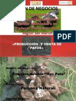 Diapositivas Exposiciones Daniel