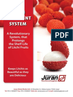 Litchi Treatment System