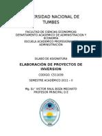 Elaboracion de Proyectos de Inversion