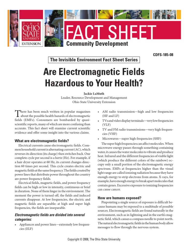 Are Electromagnetic Fields Hazardous to Your Health ...