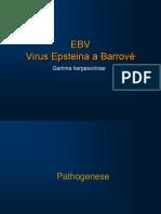19 09 Herpesviry 2 Nxpowerlite 2010 2011 Pro Zajemce Nebude Ve Zkousce